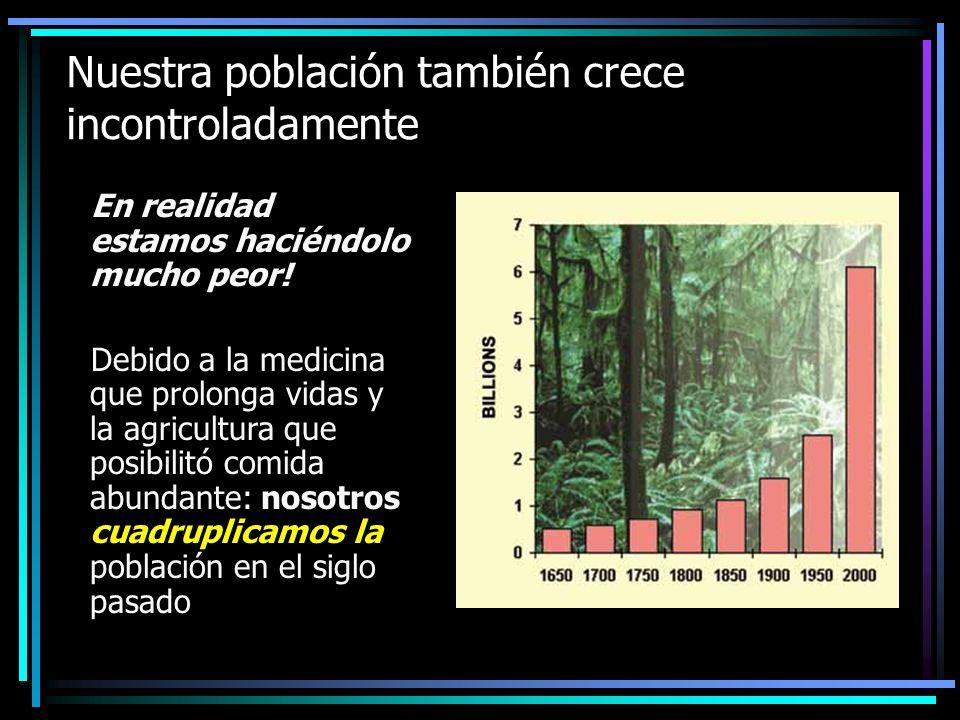 Ellos cortaron todos sus árboles… …para satisfacer sus necesidades y lujos de la sobrepoblación, deforestaron la isla por completo