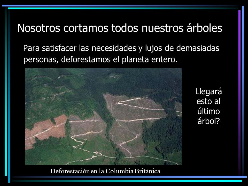 Nosotros cortamos todos nuestros árboles Para satisfacer las necesidades y lujos de demasiadas personas, deforestamos el planeta entero.