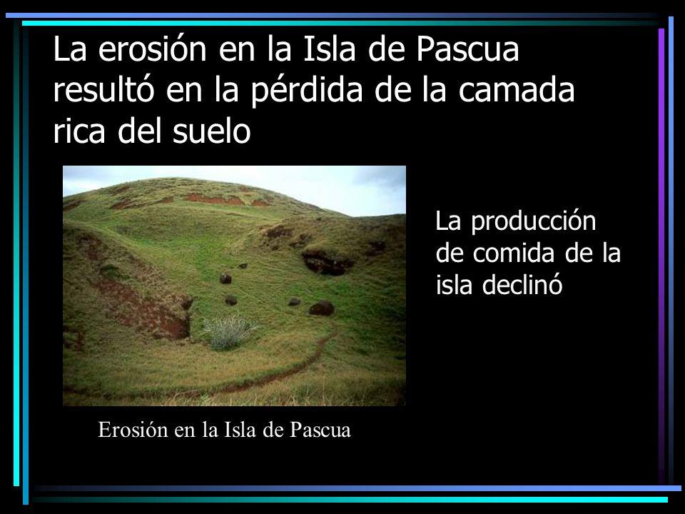 La erosión en la Isla de Pascua resultó en la pérdida de la camada rica del suelo La producción de comida de la isla declinó Erosión en la Isla de Pascua