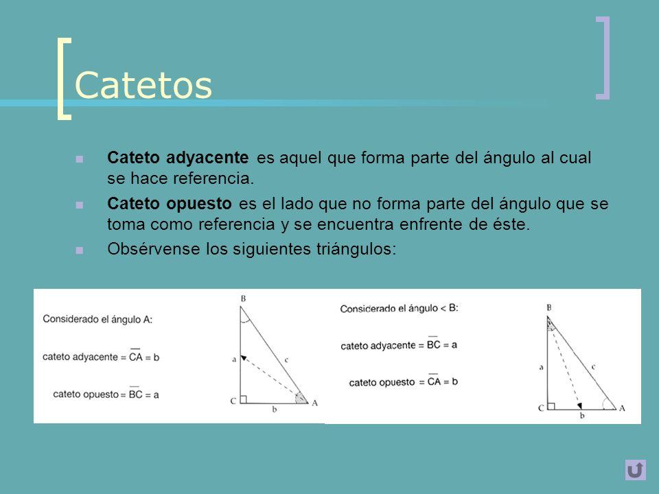 Conceptos principales La trigonometría, en sus inicios, se concretó en el estudio de los triángulos.