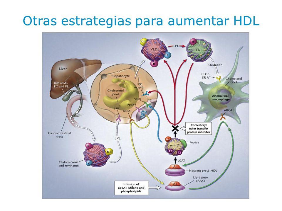 Otras estrategias para aumentar HDL