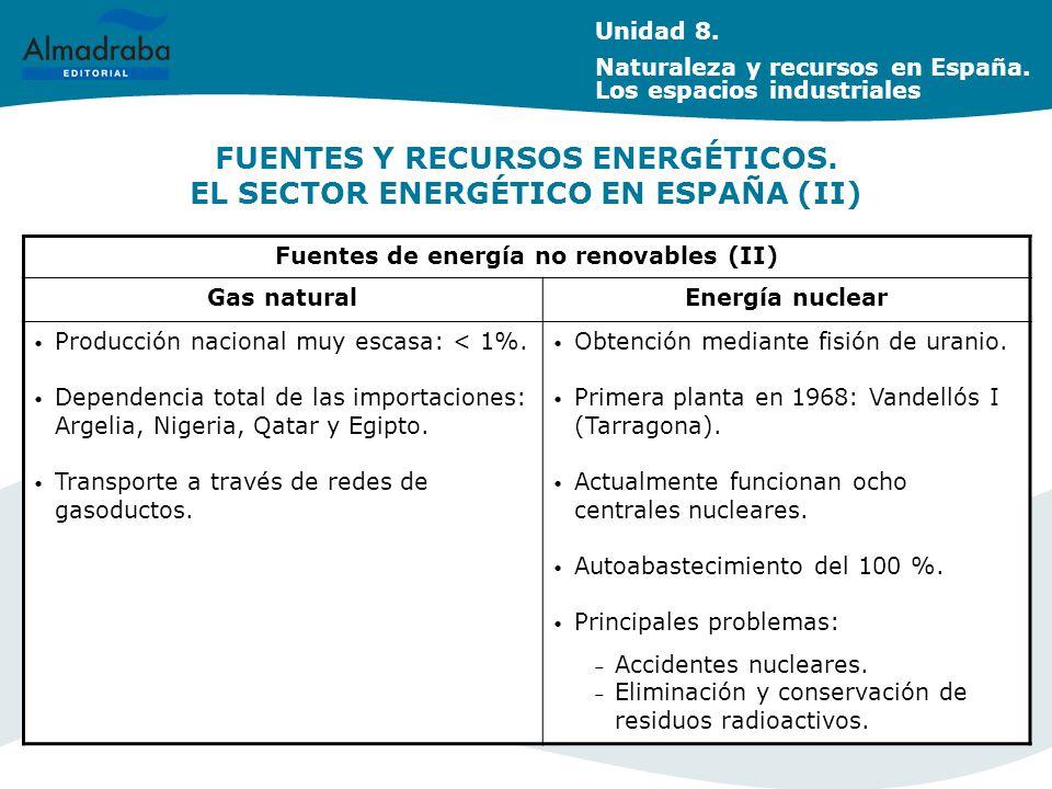 FUENTES Y RECURSOS ENERGÉTICOS.EL SECTOR ENERGÉTICO EN ESPAÑA (II) Unidad 8.