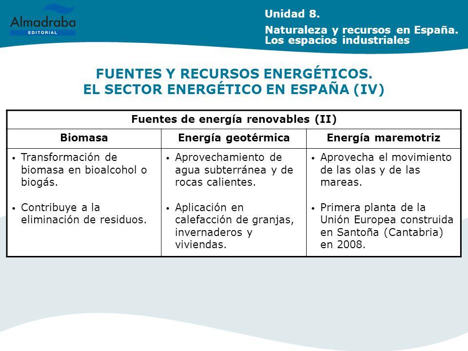 FUENTES Y RECURSOS ENERGÉTICOS.EL SECTOR ENERGÉTICO EN ESPAÑA (IV) Unidad 8.