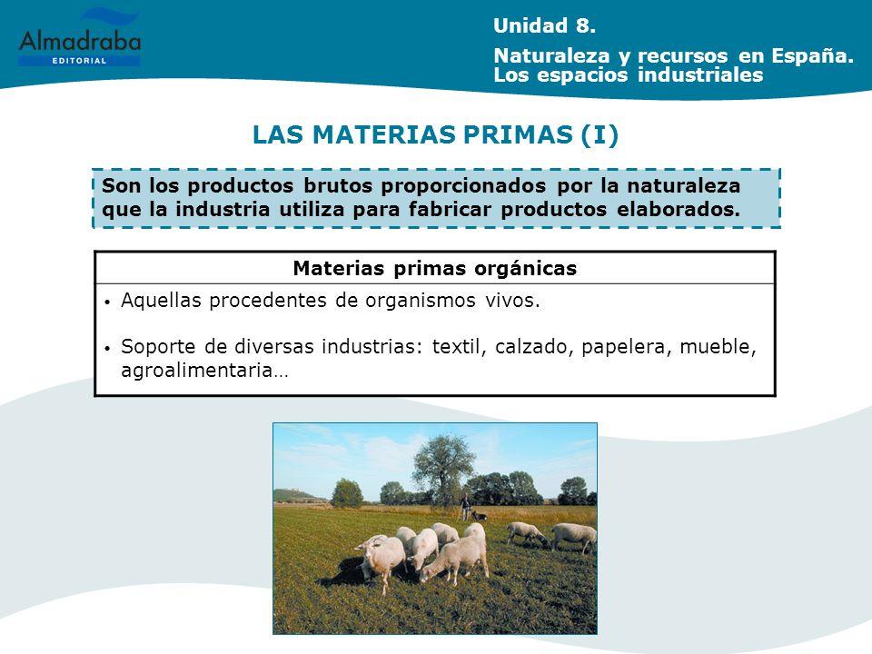 LAS MATERIAS PRIMAS (I) Materias primas orgánicas Aquellas procedentes de organismos vivos. Soporte de diversas industrias: textil, calzado, papelera,