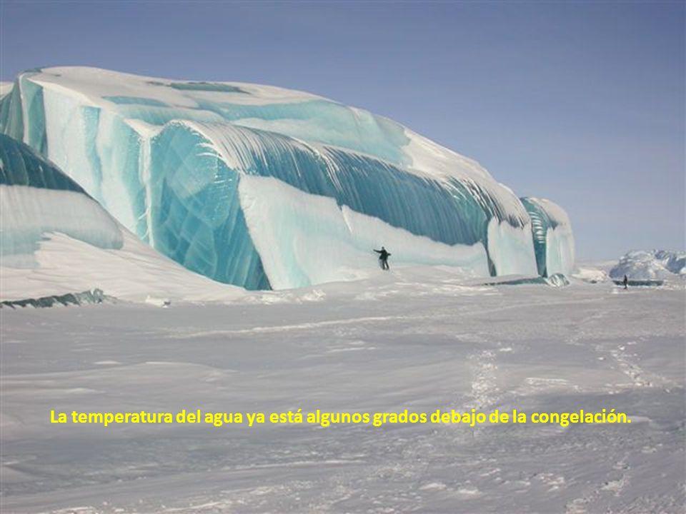 Esto es lo que es en Antártida, dónde es el tiempo más frío en décadas. El agua se hiela en el momento que entra en contacto con el aire.