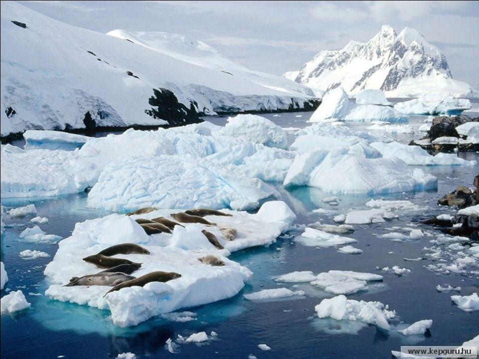 Esto es lo que es en Antártida, dónde es el tiempo más frío en décadas.