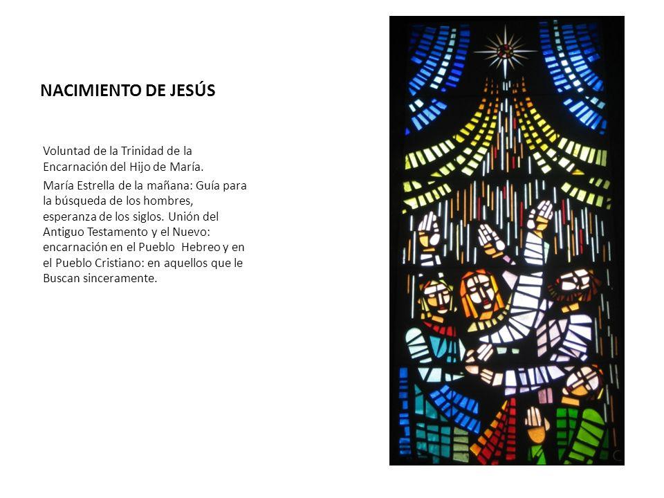 NACIMIENTO DE JESÚS Voluntad de la Trinidad de la Encarnación del Hijo de María. María Estrella de la mañana: Guía para la búsqueda de los hombres, es