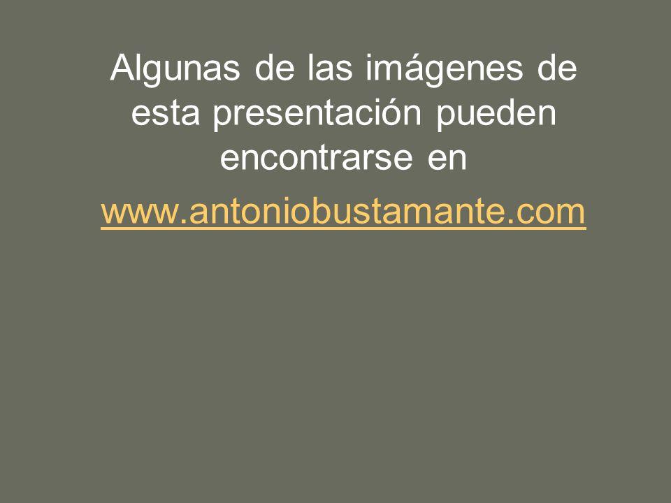Algunas de las imágenes de esta presentación pueden encontrarse en www.antoniobustamante.com