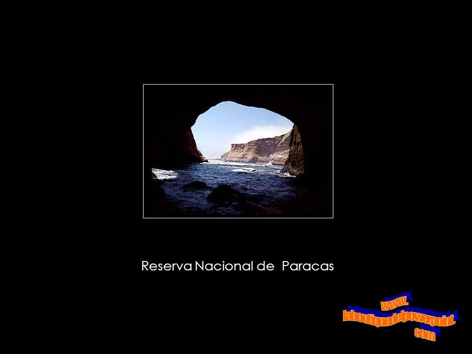 Candelabro de Paracas