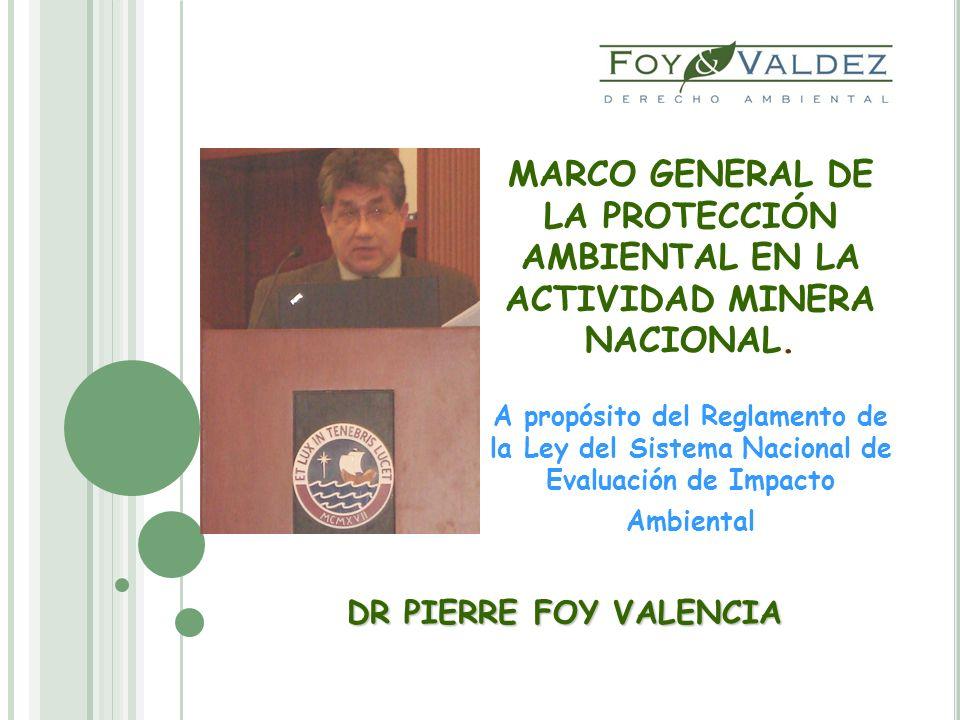 MARCO GENERAL DE LA PROTECCIÓN AMBIENTAL EN LA ACTIVIDAD MINERA NACIONAL. A propósito del Reglamento de la Ley del Sistema Nacional de Evaluación de I