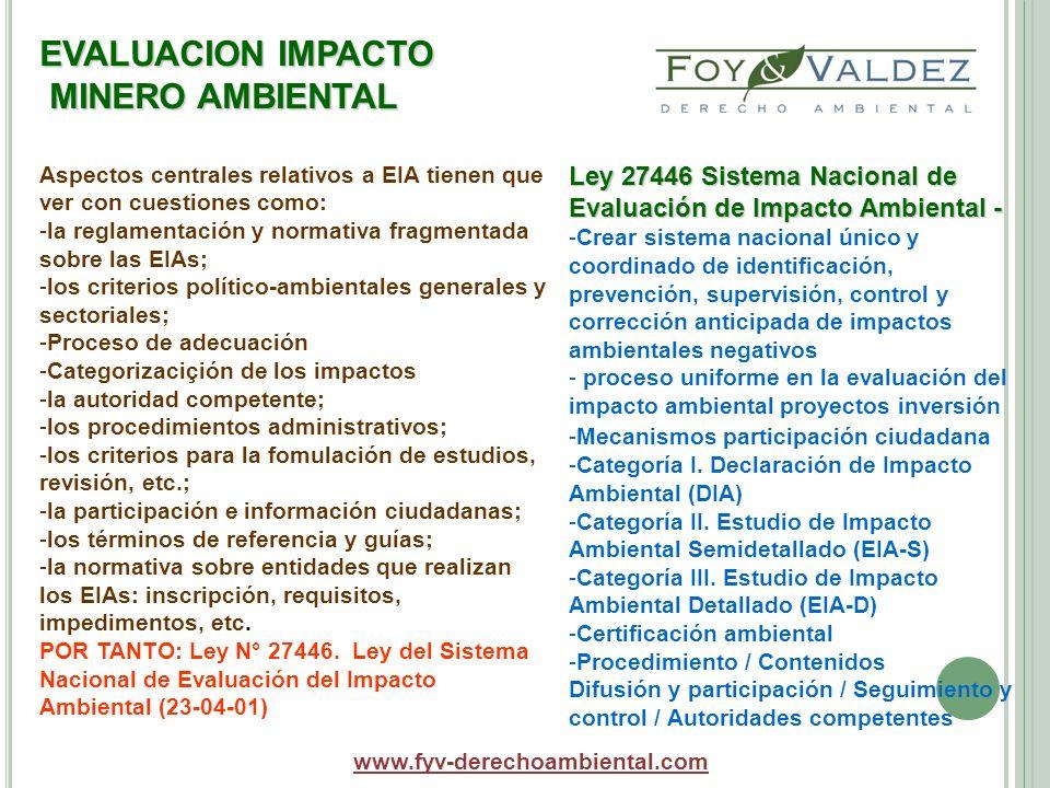 EVALUACION IMPACTO MINERO AMBIENTAL www.fyv-derechoambiental.com Aspectos centrales relativos a EIA tienen que ver con cuestiones como: -la reglamenta