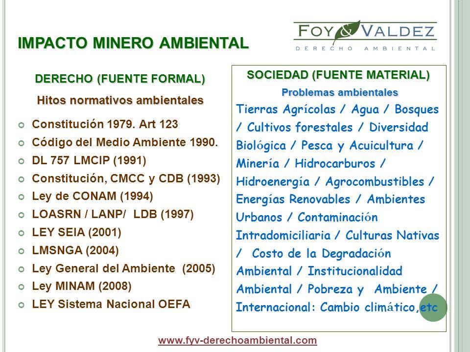 IMPACTO MINERO AMBIENTAL SOCIEDAD (FUENTE MATERIAL) Problemas ambientales Tierras Agr í colas / Agua / Bosques / Cultivos forestales / Diversidad Biol