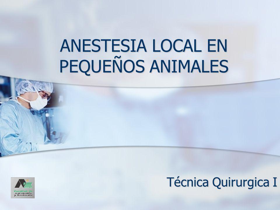 ANESTESIA LOCAL EN PEQUEÑOS ANIMALES Técnica Quirurgica I