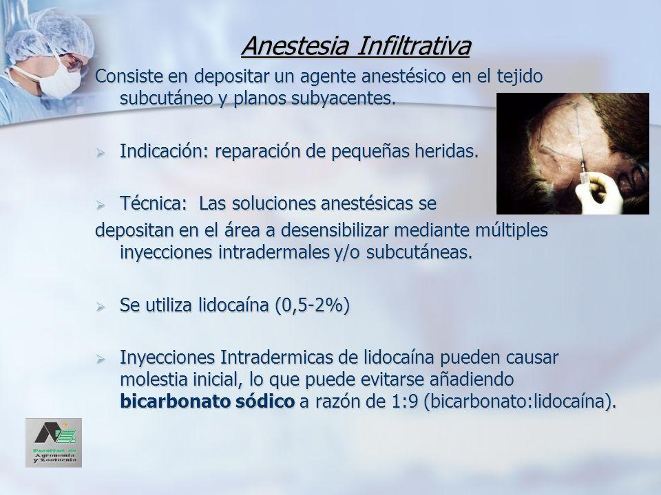 Anestesia Infiltrativa Consiste en depositar un agente anestésico en el tejido subcutáneo y planos subyacentes. Indicación: reparación de pequeñas her