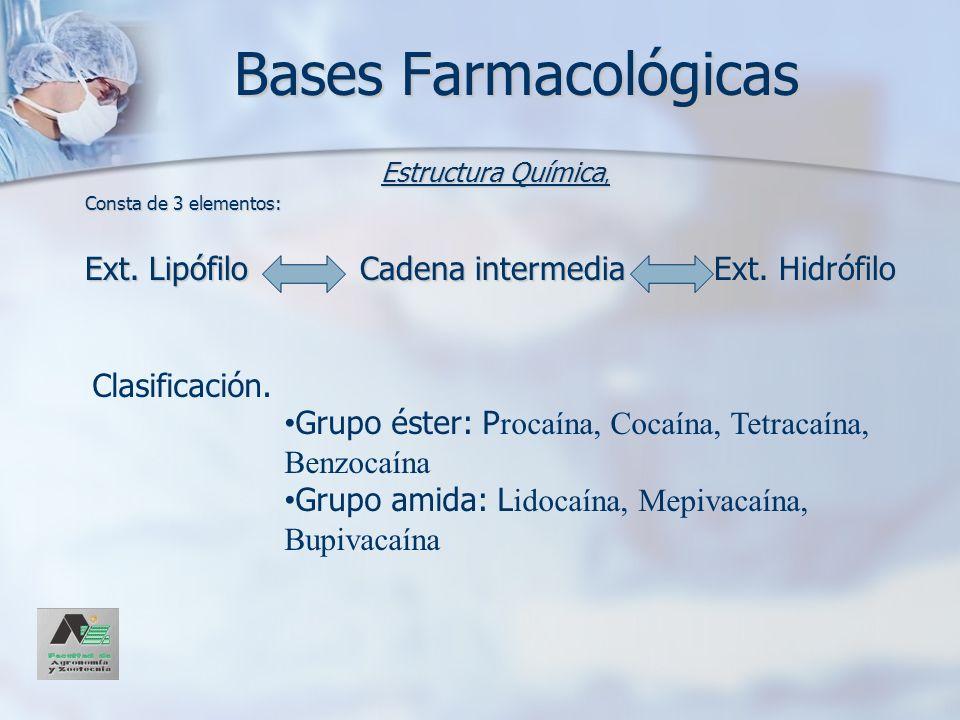 Bases Farmacológicas Estructura Química, Consta de 3 elementos: Ext. Lipófilo Cadena intermedia Ext. Hidrófilo Clasificación. Grupo éster: P rocaína,