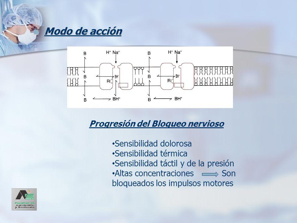 Modo de acción Modo de acción Progresión del Bloqueo nervioso Sensibilidad dolorosa Sensibilidad térmica Sensibilidad táctil y de la presión Altas con