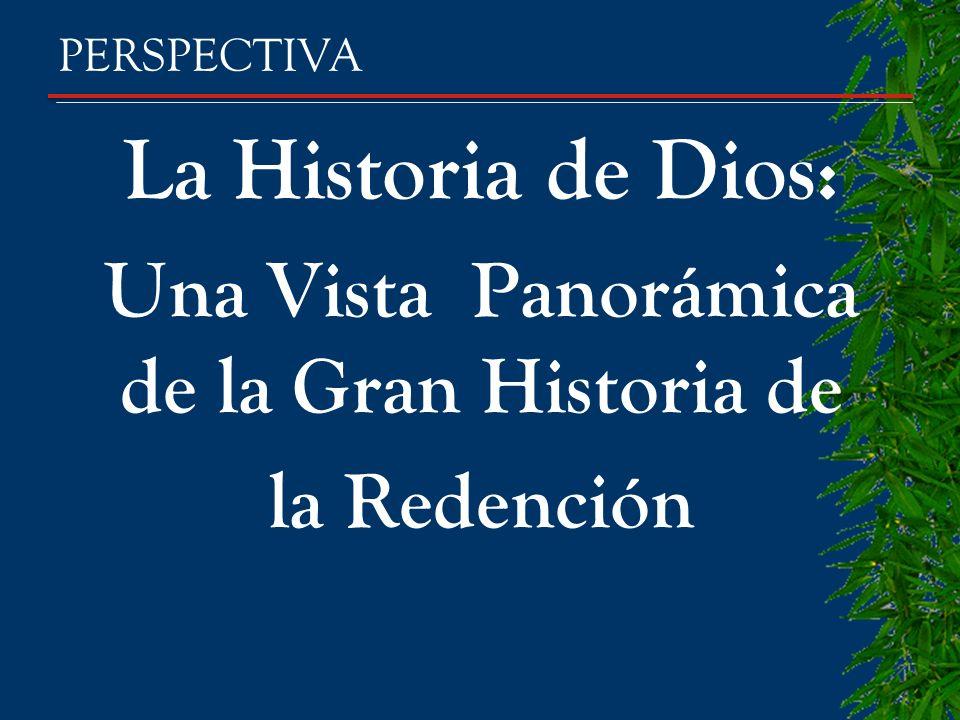 La Historia de Dios: Una Vista Panorámica de la Gran Historia de la Redención PERSPECTIVA