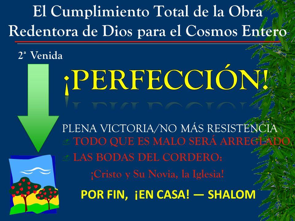 El Cumplimiento Total de la Obra Redentora de Dios para el Cosmos Entero PLENA VICTORIA/NO MÁS RESISTENCIA TODO QUE ES MALO SERÁ ARREGLADO LAS BODAS D