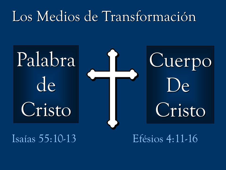 PalabradeCristo CuerpoDeCristo Isaías 55:10-13Efésios 4:11-16 Los Medios de Transformación