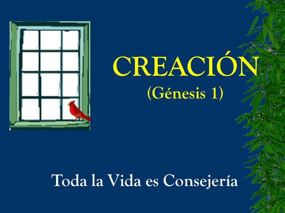 CREACIÓN (Génesis 1) Toda la Vida es Consejería