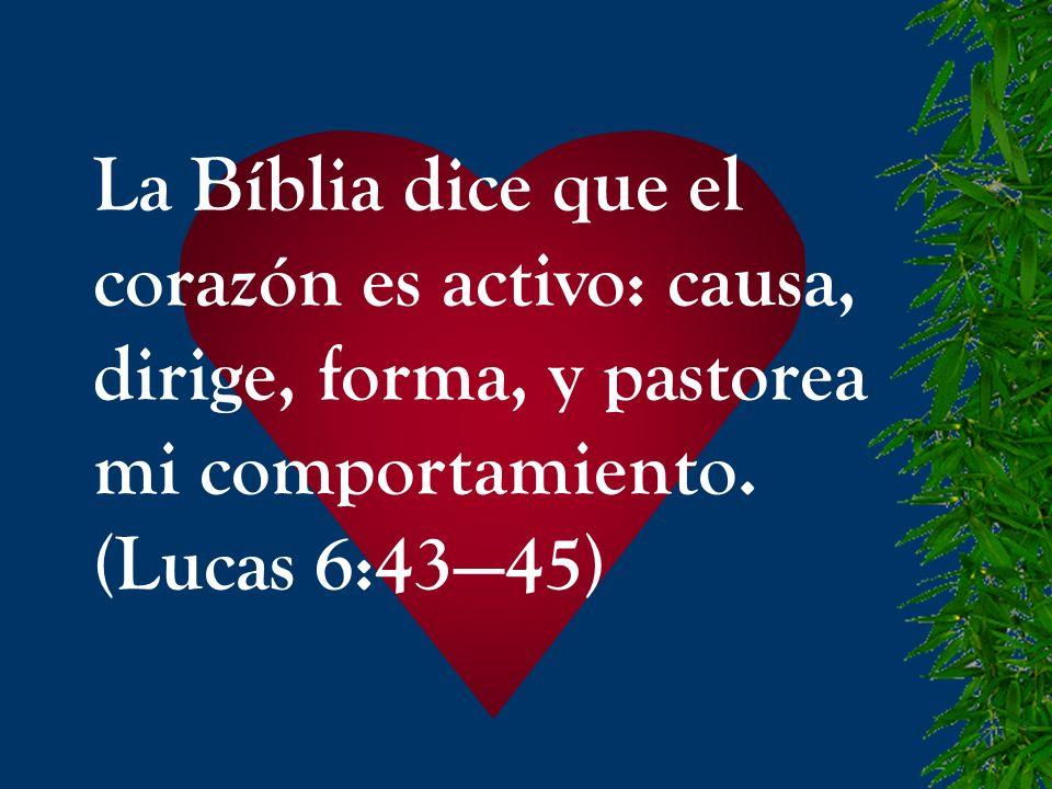 La Bíblia dice que el corazón es activo: causa, dirige, forma, y pastorea mi comportamiento. (Lucas 6:4345)
