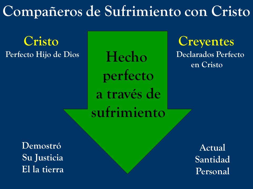 Compañeros de Sufrimiento con Cristo Cristo Creyentes Perfecto Hijo de DiosDeclarados Perfecto en Cristo Hecho perfecto a través de sufrimiento Demost