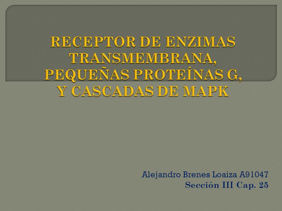 Alejandro Brenes Loaiza A91047 Sección III Cap. 25