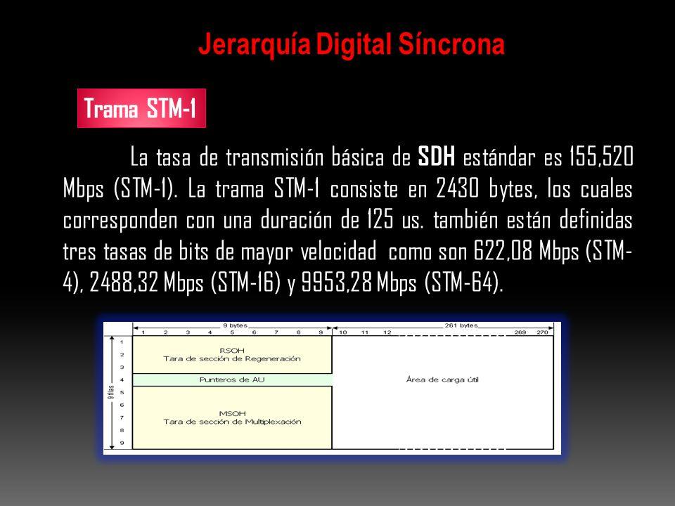 La tasa de transmisión básica de SDH estándar es 155,520 Mbps (STM-1). La trama STM-1 consiste en 2430 bytes, los cuales corresponden con una duración