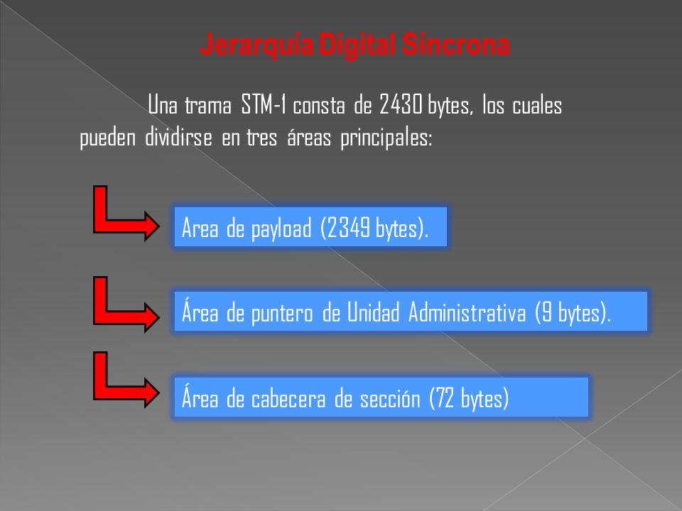 Una trama STM-1 consta de 2430 bytes, los cuales pueden dividirse en tres áreas principales: Jerarquía Digital Síncrona Area de payload (2349 bytes).