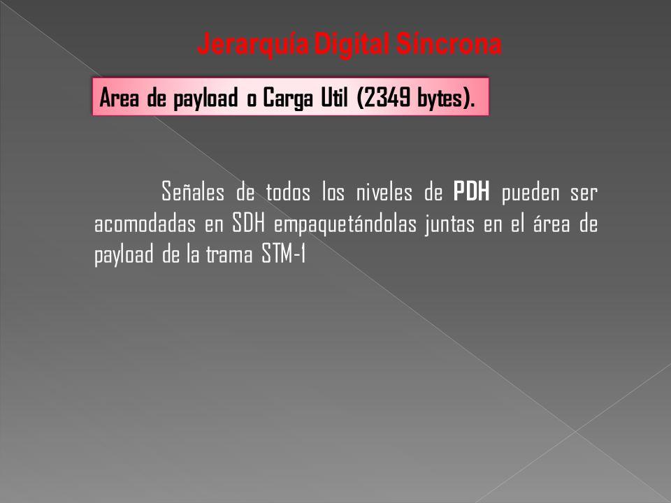 Señales de todos los niveles de PDH pueden ser acomodadas en SDH empaquetándolas juntas en el área de payload de la trama STM-1 Area de payload o Carg