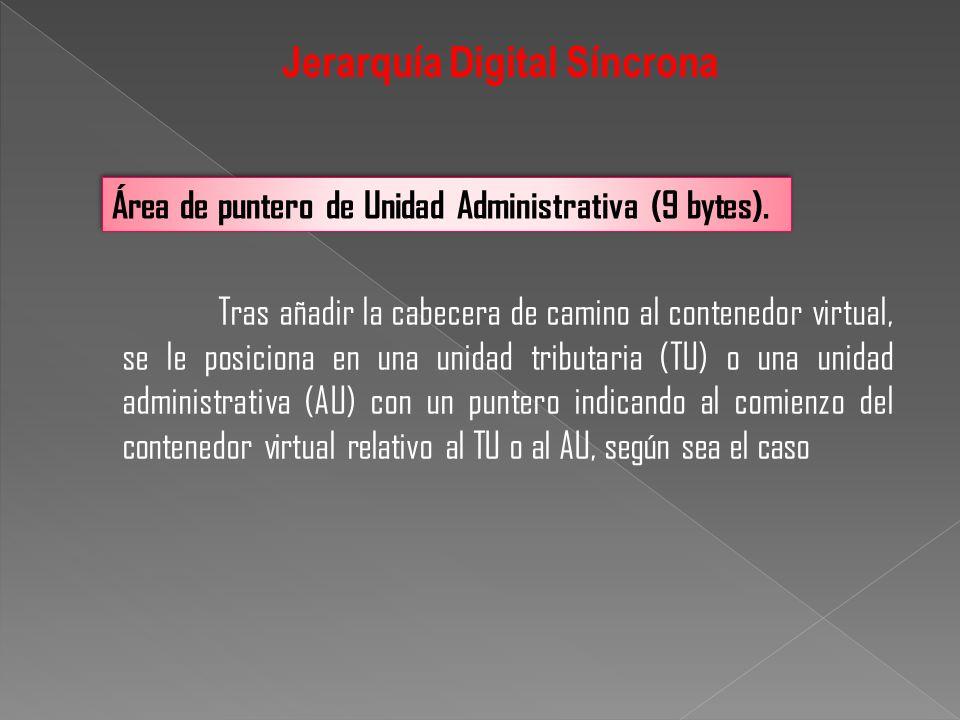 Área de puntero de Unidad Administrativa (9 bytes). Tras añadir la cabecera de camino al contenedor virtual, se le posiciona en una unidad tributaria