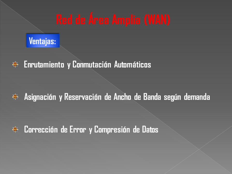 Enrutamiento y Conmutación Automáticos Asignación y Reservación de Ancho de Banda según demanda Corrección de Error y Compresión de Datos Red de Área