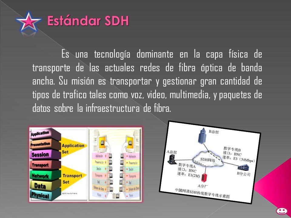 Es una tecnología dominante en la capa física de transporte de las actuales redes de fibra óptica de banda ancha. Su misión es transportar y gestionar