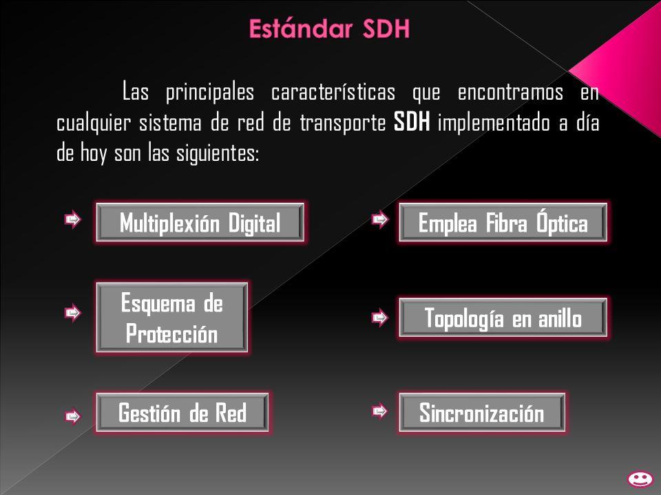 Las principales características que encontramos en cualquier sistema de red de transporte SDH implementado a día de hoy son las siguientes: Multiplexi