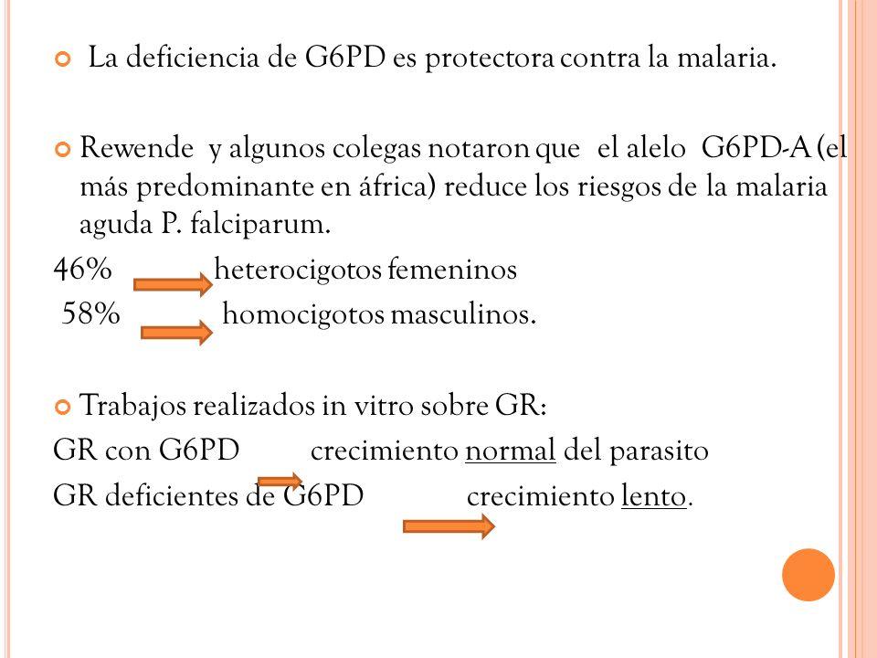 La deficiencia de G6PD es protectora contra la malaria. Rewende y algunos colegas notaron que el alelo G6PD-A (el más predominante en áfrica) reduce l