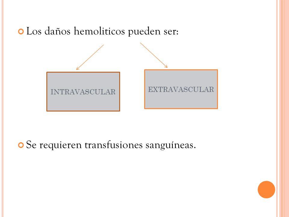 Los daños hemoliticos pueden ser: Se requieren transfusiones sanguíneas. INTRAVASCULAR EXTRAVASCULAR