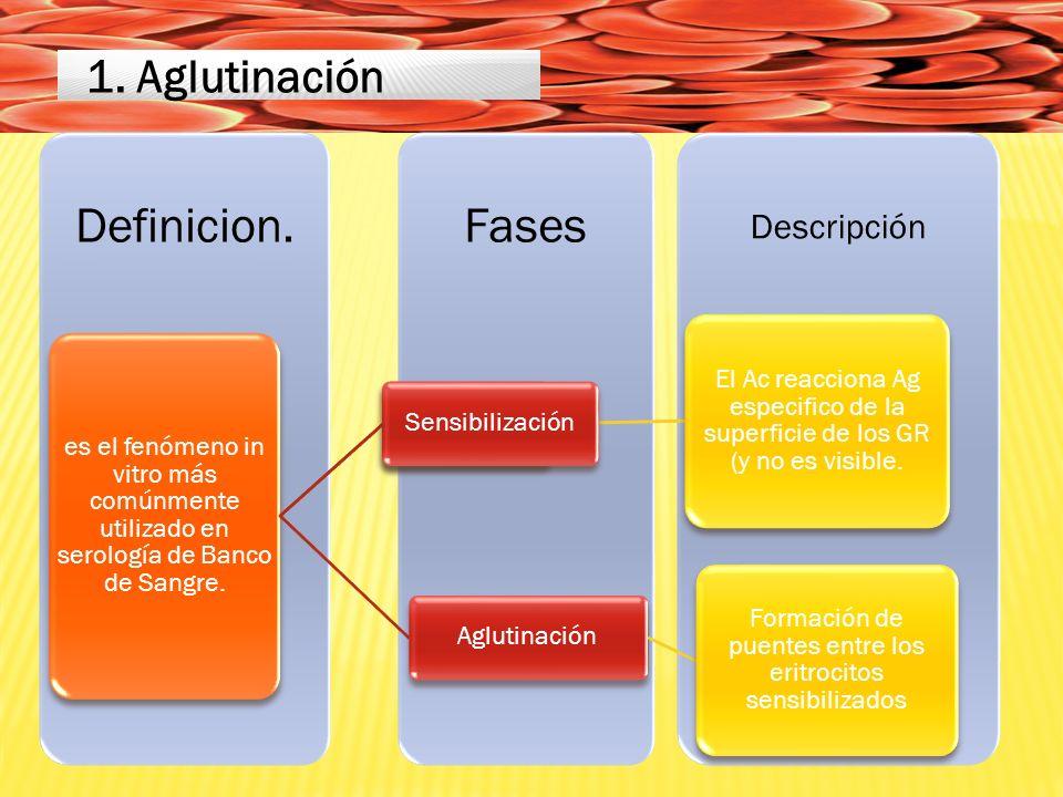 Descripción FasesDefinicion.