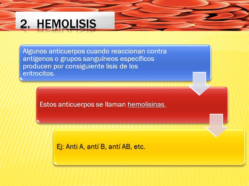 Algunos anticuerpos cuando reaccionan contra antígenos o grupos sanguíneos específicos producen por consiguiente lisis de los eritrocitos.