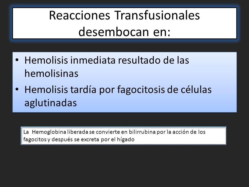 Reacciones Transfusionales desembocan en: Hemolisis inmediata resultado de las hemolisinas Hemolisis tardía por fagocitosis de células aglutinadas Hemolisis inmediata resultado de las hemolisinas Hemolisis tardía por fagocitosis de células aglutinadas La Hemoglobina liberada se convierte en bilirrubina por la acción de los fagocitos y después se excreta por el hígado