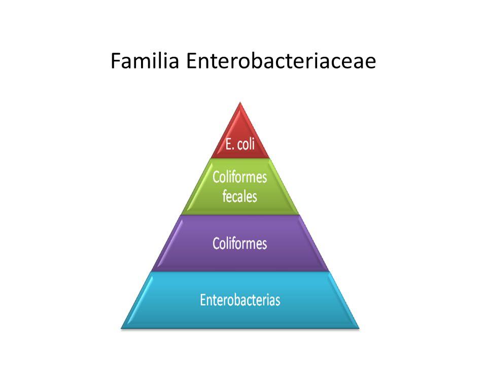 Parámetros Plan de muestreoLímite por gramo CategoríaClasencmM RAM23525 x10 4 5 x10 5 Enterobacterias53525x10 3 5x10 4 Enterobacterias5352 10 4 10 5 E.