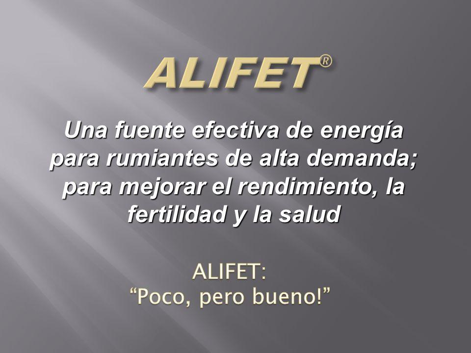 Una fuente efectiva de energía para rumiantes de alta demanda; para mejorar el rendimiento, la fertilidad y la salud