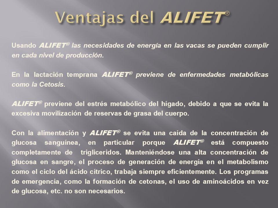 Usando ALIFET ® las necesidades de energía en las vacas se pueden cumplir en cada nivel de producción. En la lactación temprana ALIFET ® previene de e