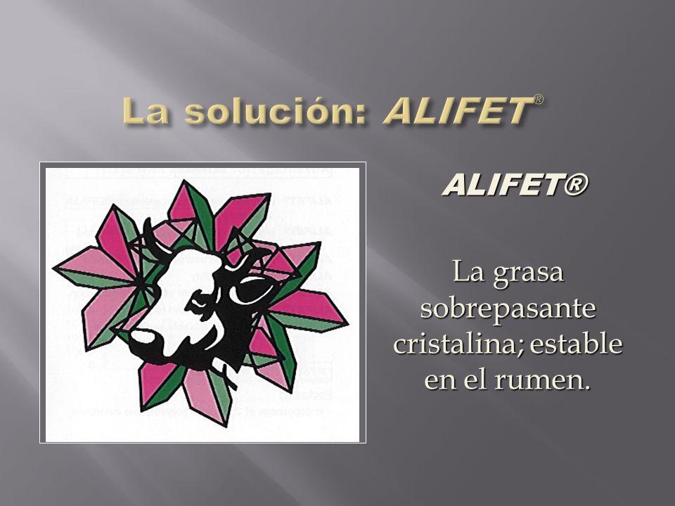 ALIFET® La grasa sobrepasante cristalina; estable en el rumen.