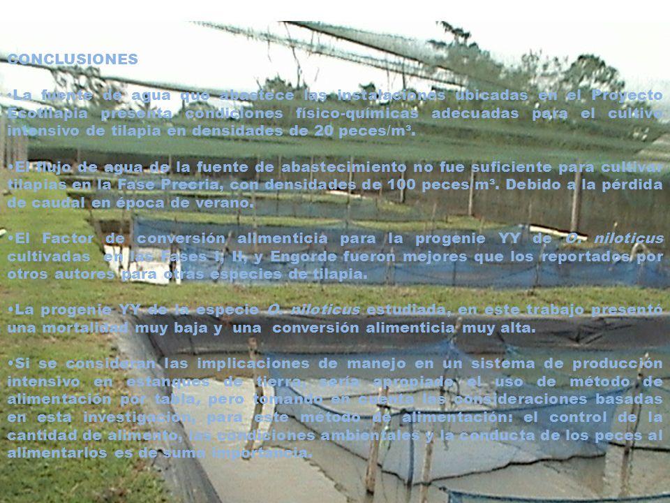 CONCLUSIONES La fuente de agua que abastece las instalaciones ubicadas en el Proyecto Ecotilapia presenta condiciones físico-químicas adecuadas para e