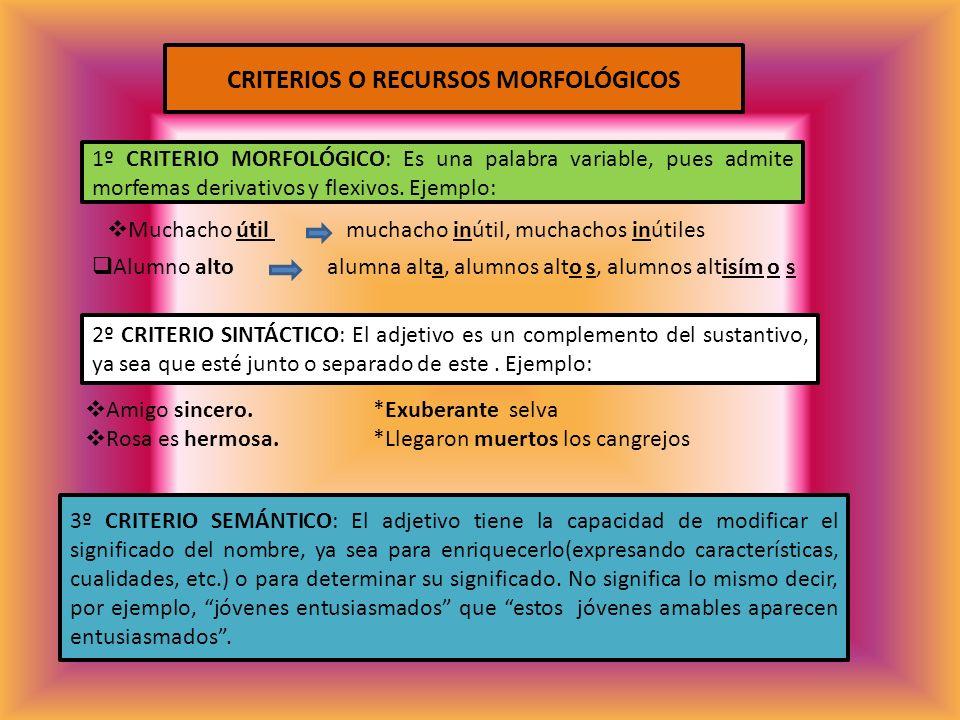 CRITERIOS O RECURSOS MORFOLÓGICOS 1º CRITERIO MORFOLÓGICO: Es una palabra variable, pues admite morfemas derivativos y flexivos. Ejemplo: Muchacho úti