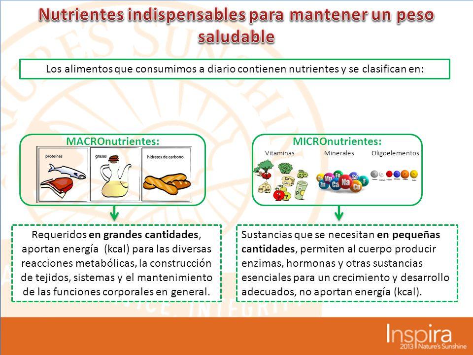 Los alimentos que consumimos a diario contienen nutrientes y se clasifican en: MACROnutrientes:MICROnutrientes: Requeridos en grandes cantidades, aportan energía (kcal) para las diversas reacciones metabólicas, la construcción de tejidos, sistemas y el mantenimiento de las funciones corporales en general.