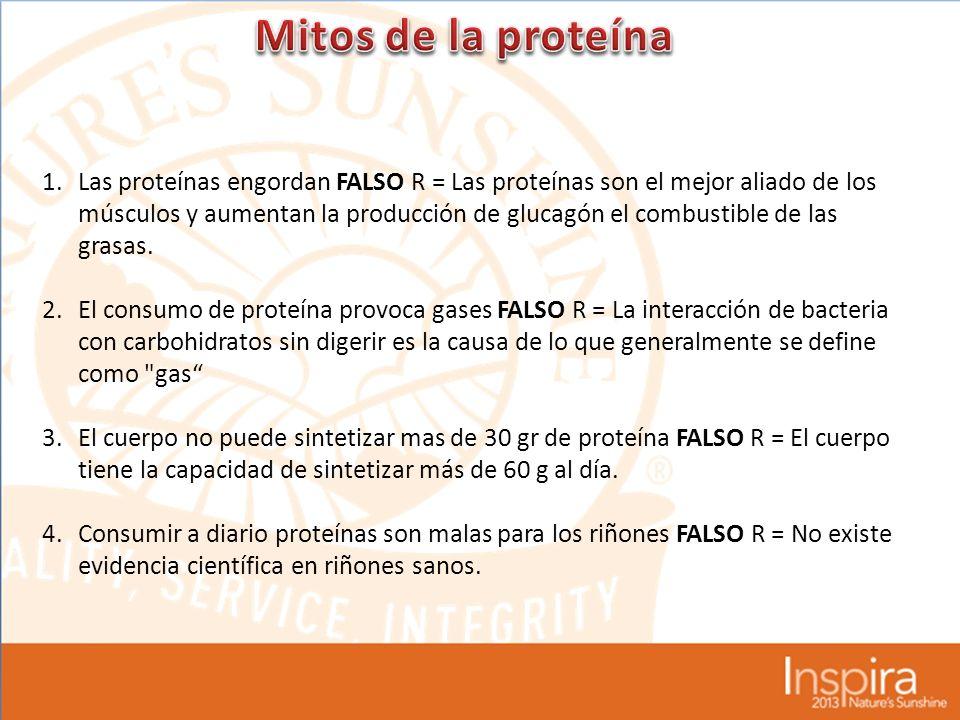 1.Las proteínas engordan FALSO R = Las proteínas son el mejor aliado de los músculos y aumentan la producción de glucagón el combustible de las grasas.