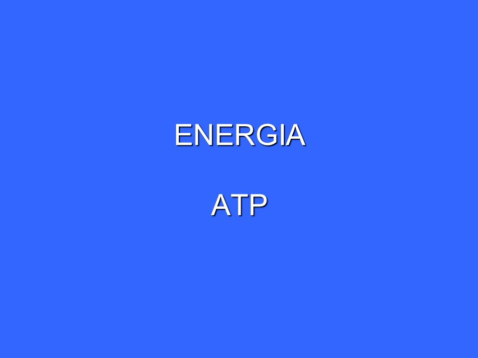 ENERGIA TRIFOSFATO DE ADENOSINA (ATP) ESTRUCTURA Nucleótido formado por : Nucleótido formado por : a) Adenina b) Ribosa c) Unidad trifosfato Los dos grupos fosfóriles terminales están unidos por enlaces fosfoanhidrido estables en condiciones intracelulares suaves Los dos grupos fosfóriles terminales están unidos por enlaces fosfoanhidrido estables en condiciones intracelulares suaves Enzimas especificas para la hidrólisis del ATP de los enlaces fosfoanhidrido Enzimas especificas para la hidrólisis del ATP de los enlaces fosfoanhidrido