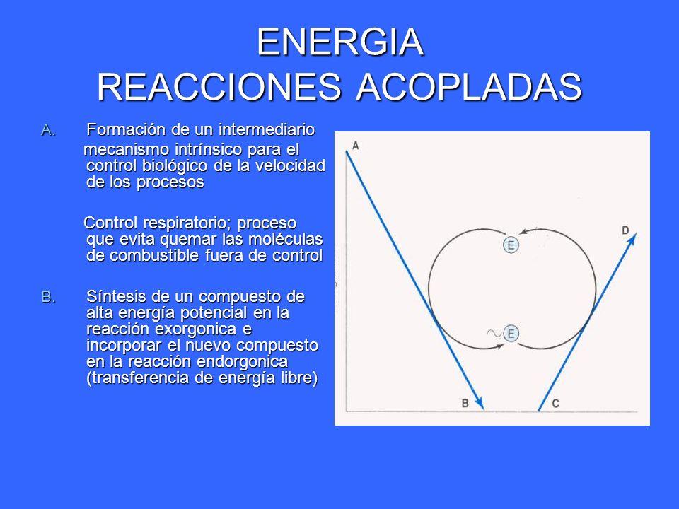 ENERGIA REACCIONES ACOPLADAS A. Formación de un intermediario mecanismo intrínsico para el control biológico de la velocidad de los procesos mecanismo
