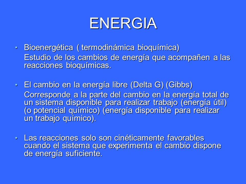 ENERGIA Bioenergética ( termodinámica bioquímica) Bioenergética ( termodinámica bioquímica) Estudio de los cambios de energía que acompañen a las reac